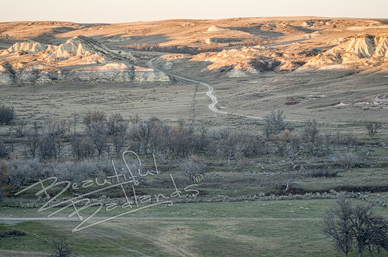 Take a run, or a hike across a working Badlands Cattle Ranch open to visit