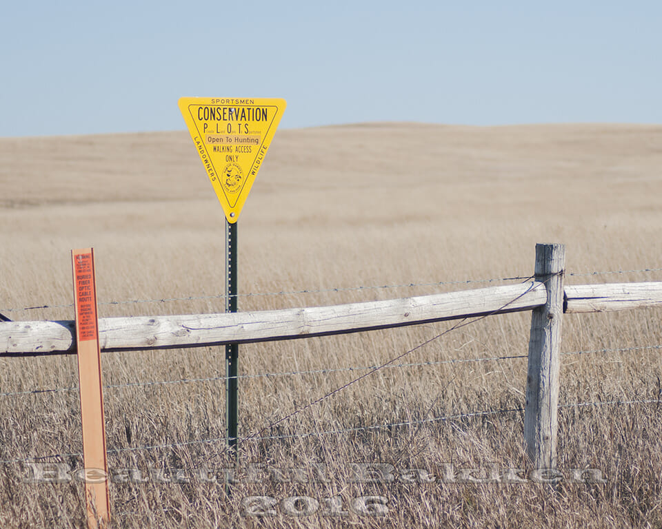 Triangle PLOTS signs mark areas where hunters and others can enter even though it is privately owned.