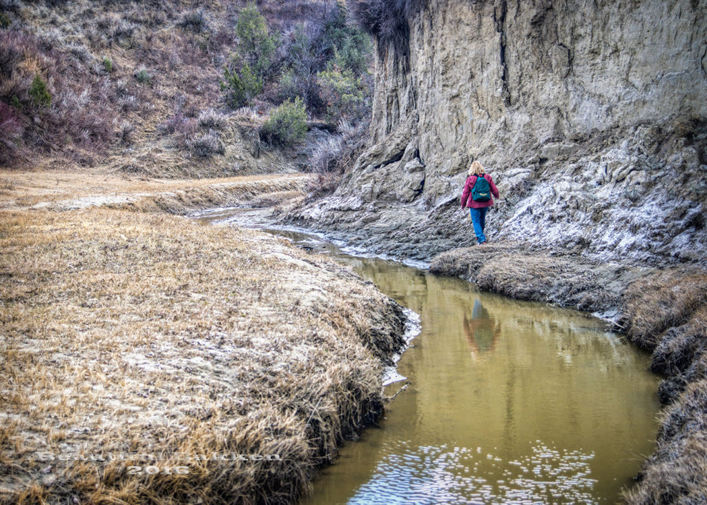 Walking the Bennett Creek Trail along the creek bank next to a high wall.