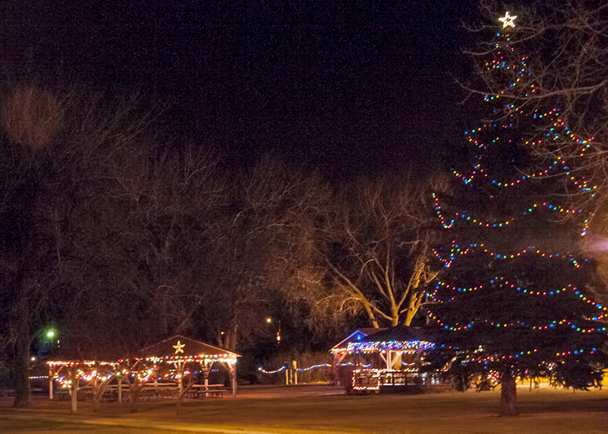 Arnegard's city park includes a tall Christmas tree.