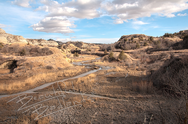 The North Dakota Badlands are carved by erosion