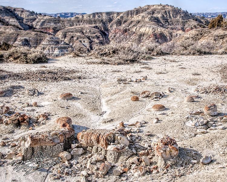 badlands dinosaur eggs concretions