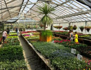 greenhouse, Glendive, Bloom, flowers, coffeeshop, eatery, Montana, BeautifulBadlandsND
