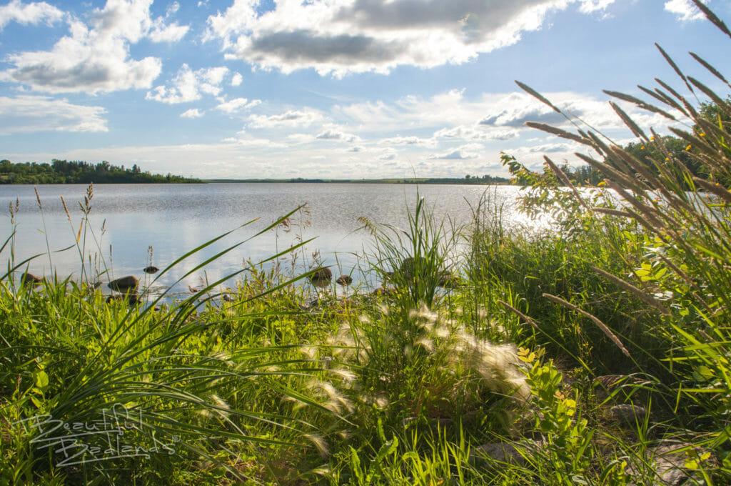 quiet lake ilo