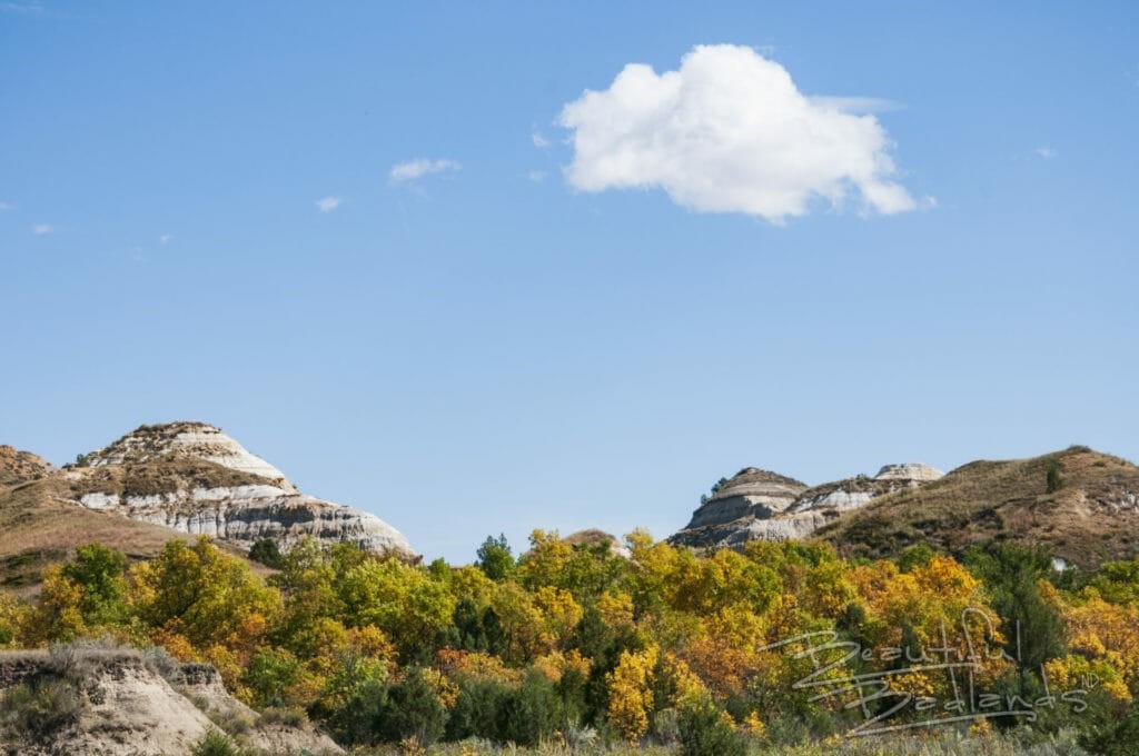 North Dakota Badlands, Magpie, fall colors