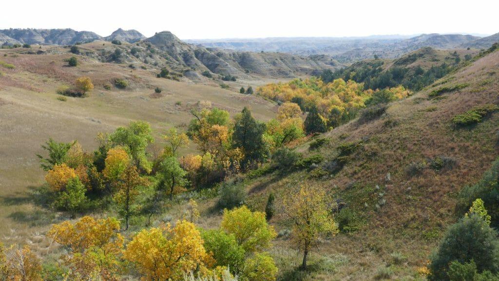 Creeks feeding the Little Missouri River show fall colors mid September in western North Dakota.