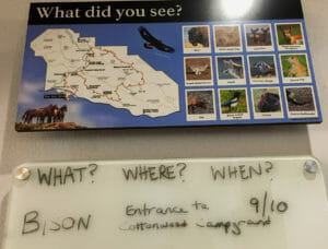 Check the information board for times and places of current wild life sightings at Theodore Roosevelt National Park