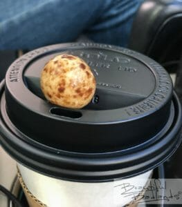 A chocolate covered coffee bean is an extra treat included with coffee beverages at Cowboy Coffee in Killdeer, North Dakota