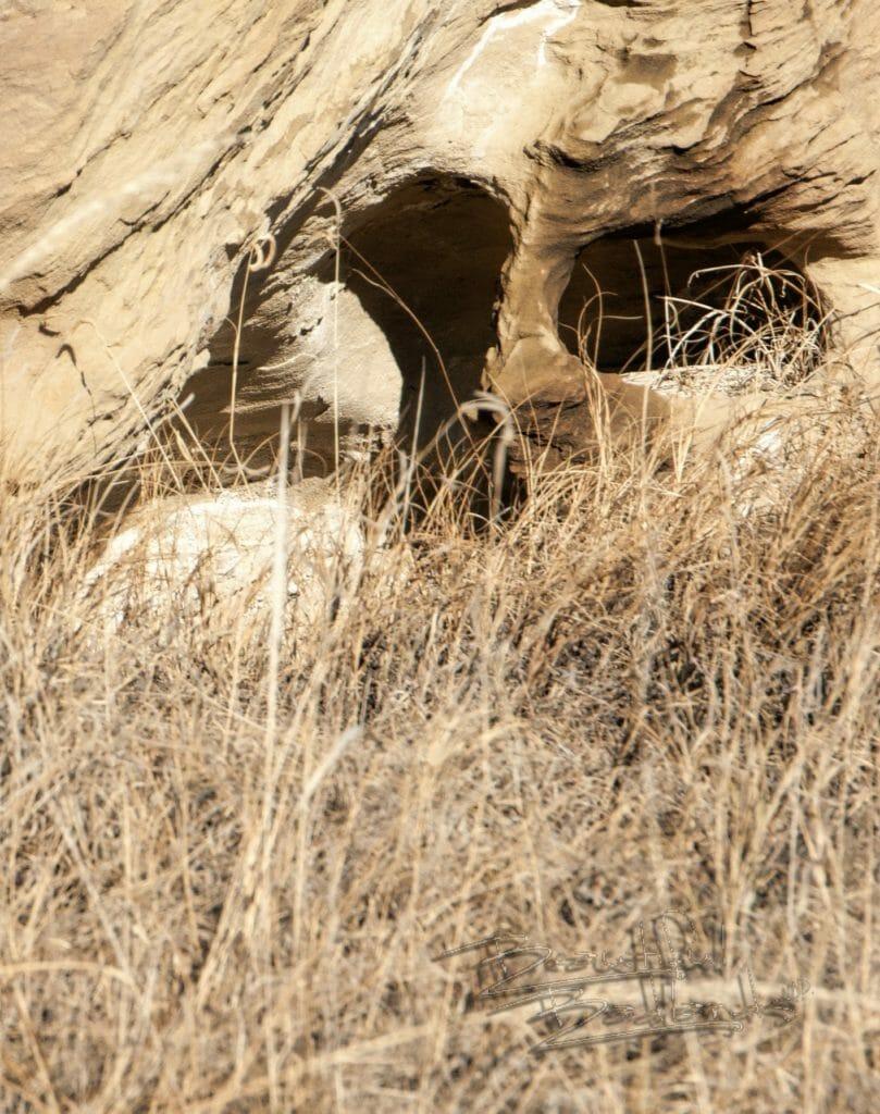 a mystery rock face in the hillside