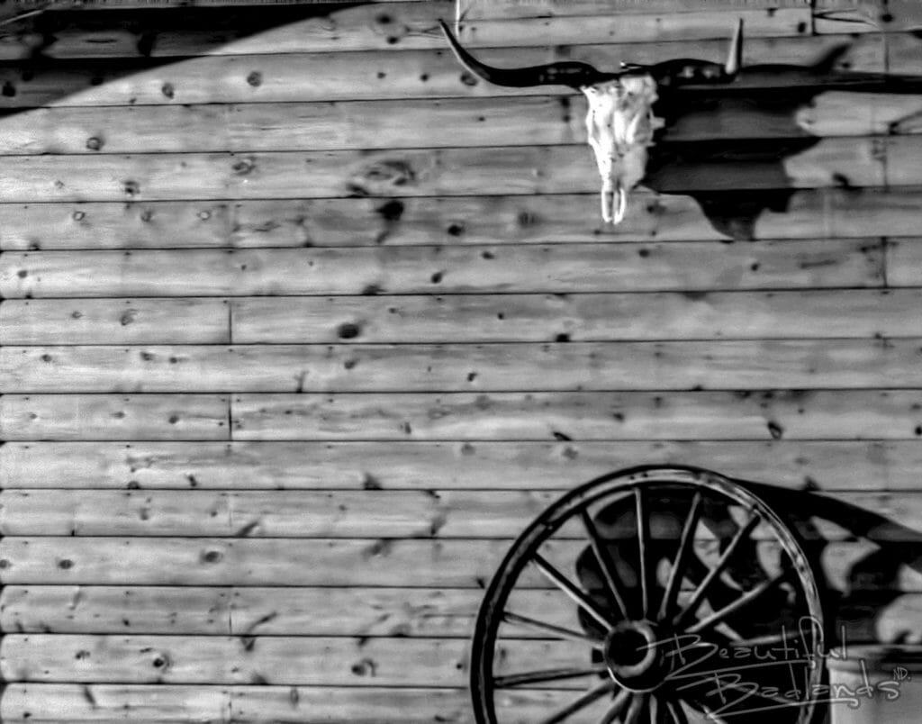 long horn skull, wood siding, wagon wheel