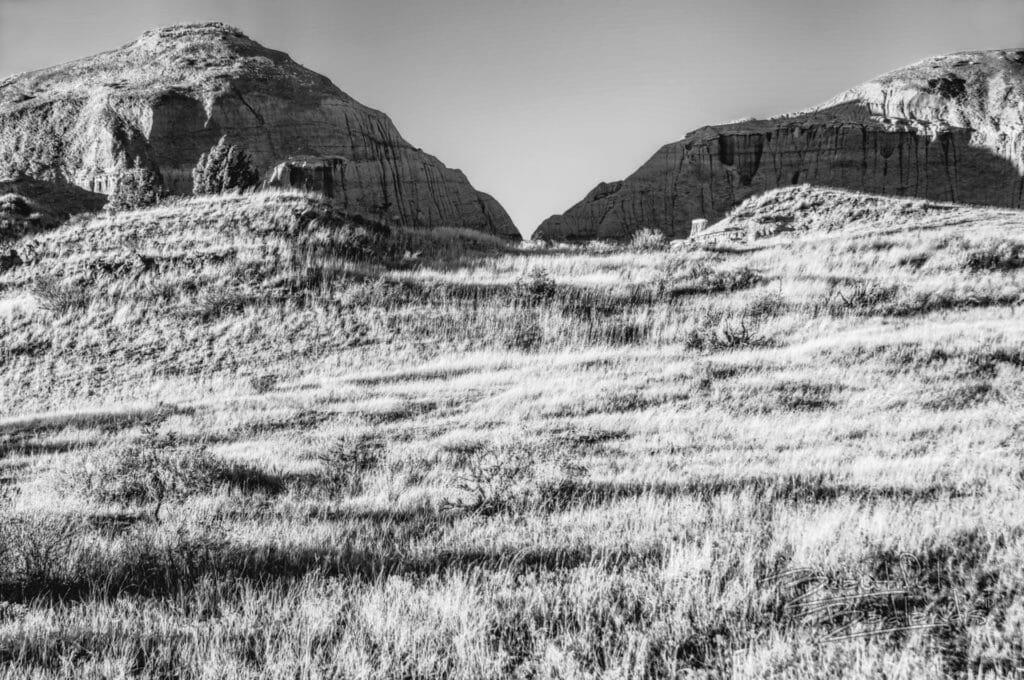grass and hills