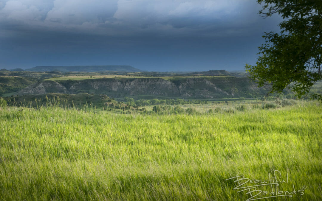 See how massive powerful skies cover the green Badlands — Sunday Snapshot