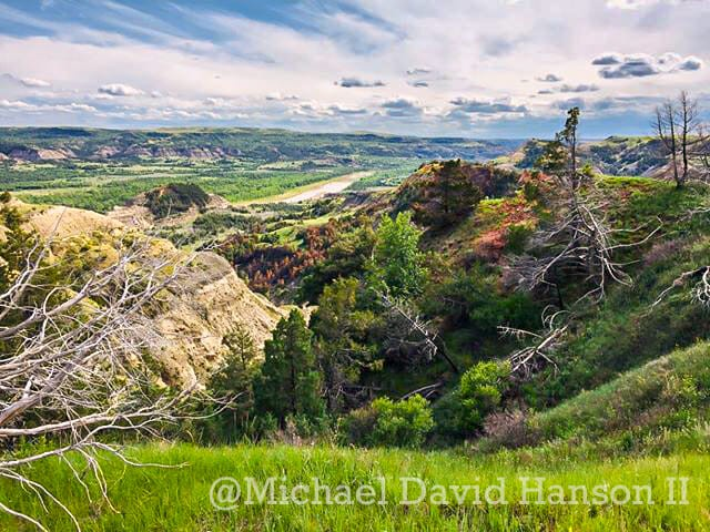 Stunning Greens of the North Dakota Badlands in June, North Unit of Theodore Roosevelt National Park, by Michael David Hanson II