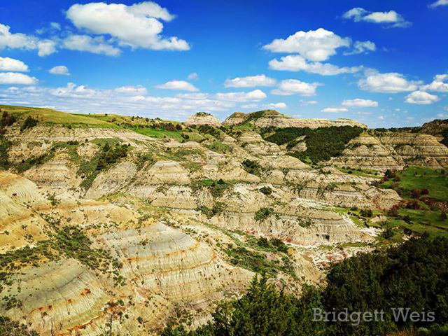 First Visit to Theodore Roosevelt National Park, by Bridgett Weis