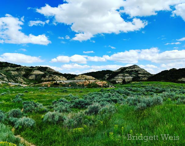 Badlands of Theodore Roosevelt National Park, by Bridgett Weis. June 2019