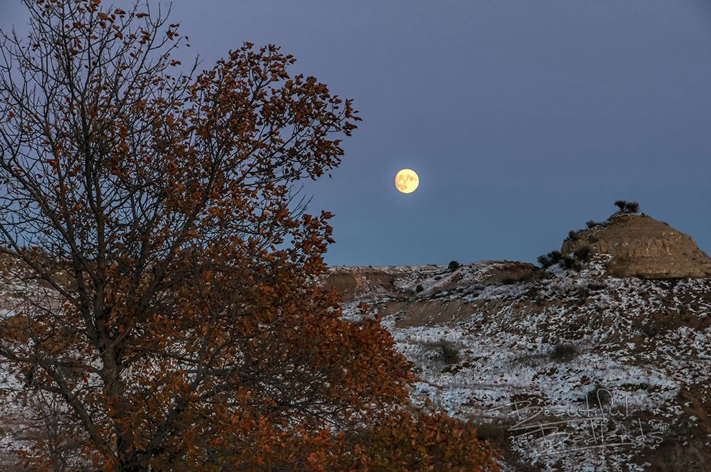 Nearly full moon october sunset sky