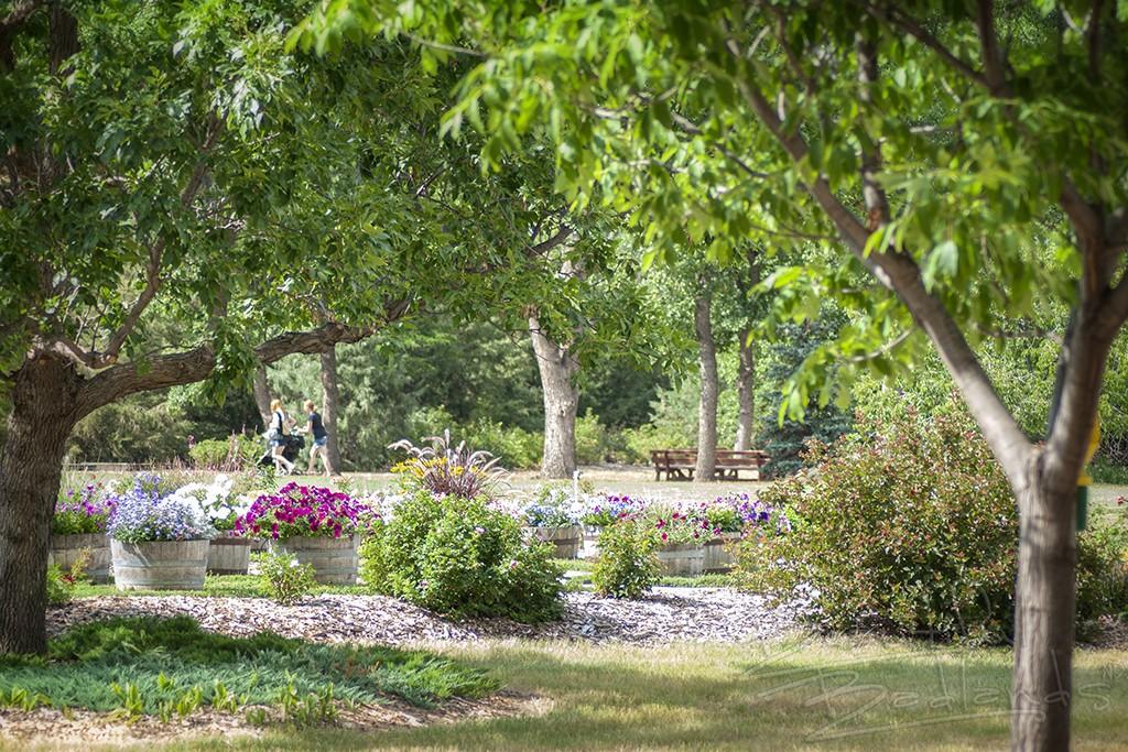 Dickinson Gardens NDSU Extension Service